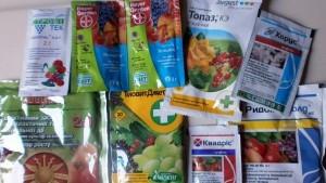 препараты для лечения винограда