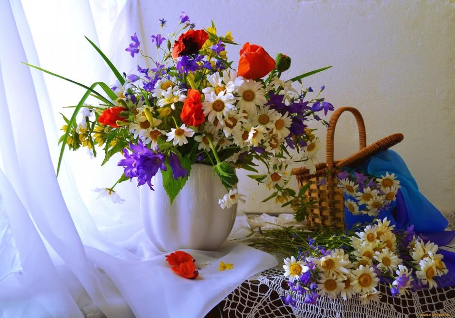 выбор полевых цветов