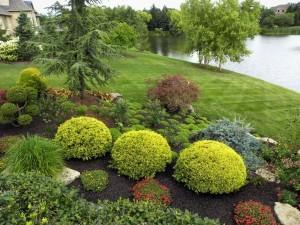 Красивая ландшафтная композиция: ландшафтный дизайн