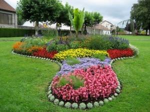 цветник из петунии
