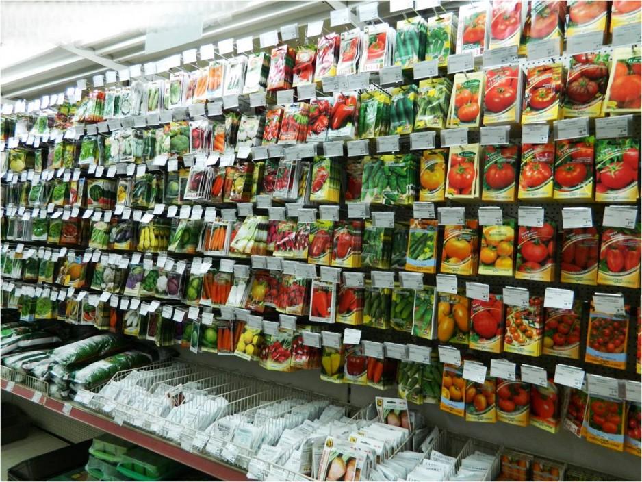 Как подобрать семена на рассаду