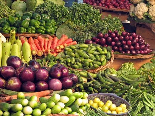 тенелюбивые овощи