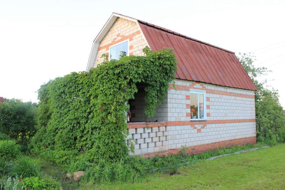 двухэтажный дом с зеленью покрывающей козырёк крыльца