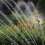 струи воды на фоне травы и цветов