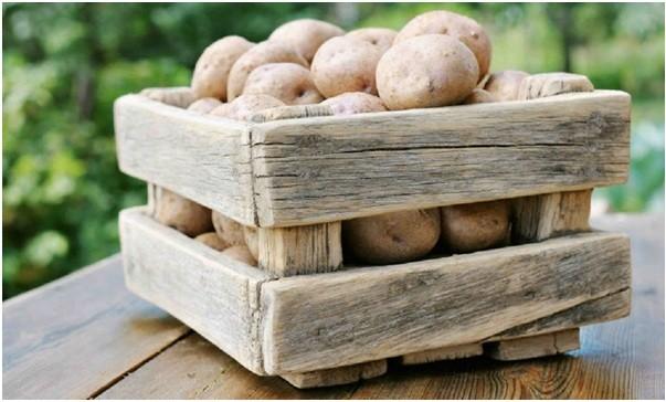 В чем хранить картофель