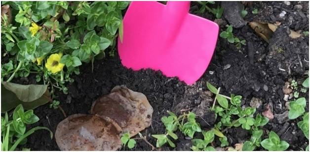 применение пушонки для раскисления почвы