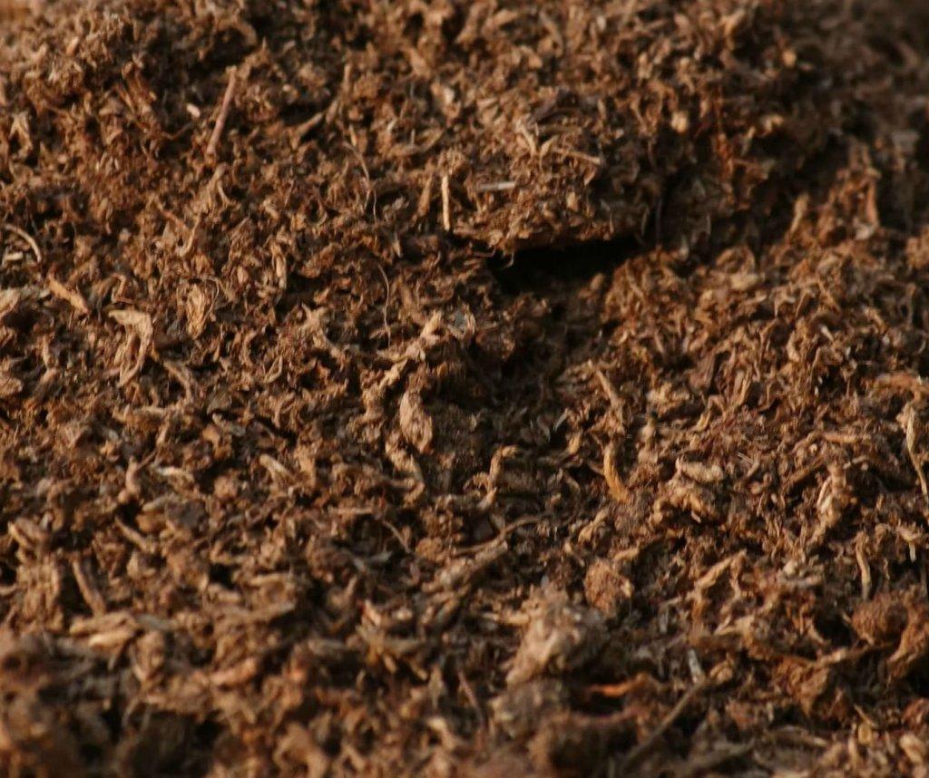 торф коричневого цвета